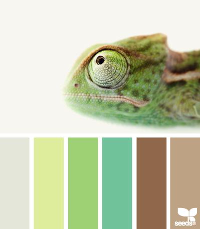 ColorProfile